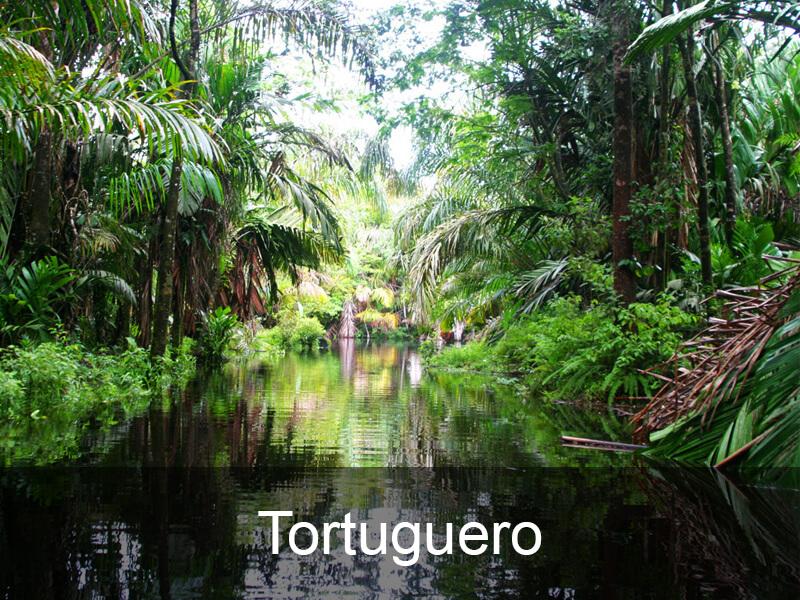 tortuguero-bestemmingen